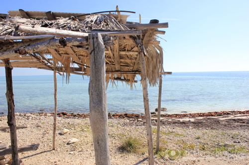 The hut.