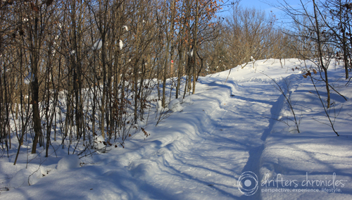A groomed snowshoe trail
