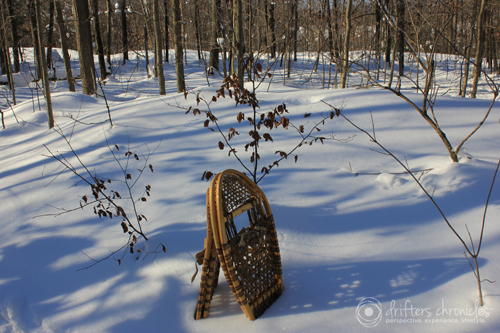 Our snowshoes.