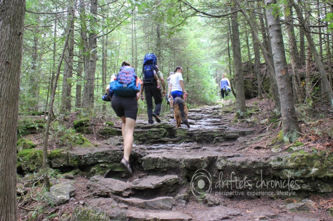 Hiking along the Bruce Trail